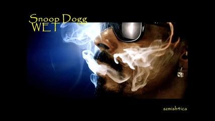 Snoop Dogg Ft. The Cataracs - Wet [текст+превод]