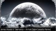 James Woods & Talamanca - Arrival (digital Cassette Remix)