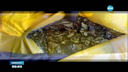 УДАР: Митничари разбиха международен канал за трафик на наркотик