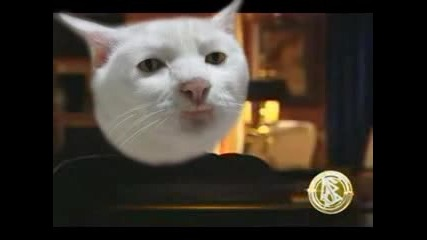Мисията Невъзможна - Котешки Смях