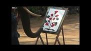 Слон рисува с хобот