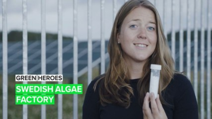 Green Heroes: The start-up that's using algae to level up solar panels