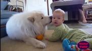 Деца и кучета се забавляват