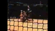 Cage Rage Knockouts