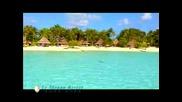 Inter Continental Bora Bora Le Moana Resor