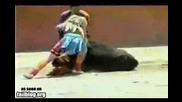 (18+) Джудже тореадор и разгонен бик ! Смях !!!