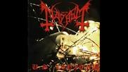 Carnage - Mayhem