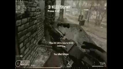 Call of Duty 4_ Before I forget