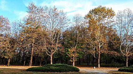 Есенни пътеки