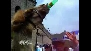 Дори Животните Обичат Алкохол...