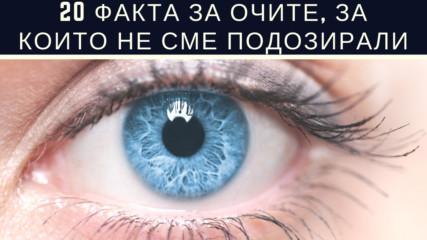 20 факта за очите, за които не сме подозирали