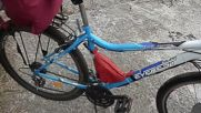 Front electric motor drives electric bicycle powered from batteries in a pink sak