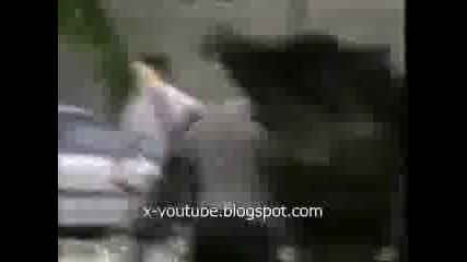 Призрак - Скрита Камера