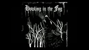Howling in the Fog - Drained From Suicidal Thoughts ( full album Ep )