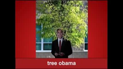 Obama Llama Song