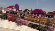 Най-голямата и красива градина в света! - Dubai Miracle Garden