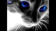 || Ralicka ™ || » Страхотно Тракче + Virtual Cat :p ;d