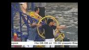 Видеохолика 2008 ( Videoholica)