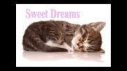 **dreams**