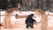 Страхотно ... Сибирски хъскита направени от дърво с моторна резачка