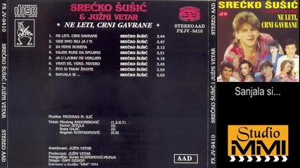 Srecko Susic i Juzni Vetar - Sanjala si (Audio 1994)