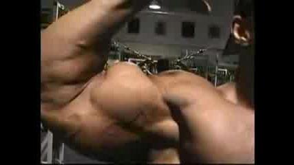 Фитнес - Мускули - Bodybuilding