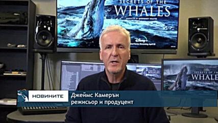 Джеймс Камерън ни разказва за тайните на китовете