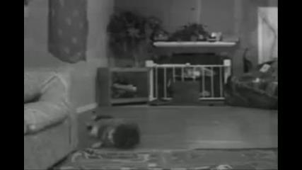 Бебе играе брейк
