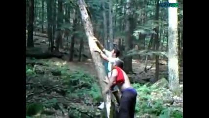 Идиоти и дърво (смях) !!!