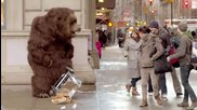 Гладна мечка вилнее на улицата