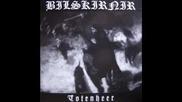 Bilskirnir - Gerbrechlichkeit (burzum cover)