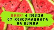 Диня: 6 ползи от консумацията на плода