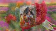 Джамиля Айбазова и Инал Джуккаев - Не рви цветы завянут они!