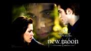 Citati ot Twilight, New Moon & Eclipse