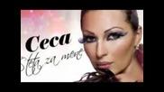 Ceca - Sve sto imam i nemam -2011 Hit -песен