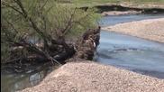 Дънери са затлачили коритото на река Тунджа край с. Розово