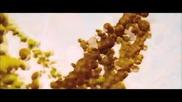 Gabi / Руско кафе (2012) - 1/6