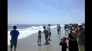 Да Преминеш Звуковата Бариера!!! Над Плажа!!!