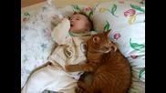 Коте и бебе 4