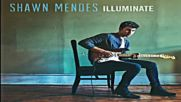 01. Shawn Mendes - Ruin ( Audio)