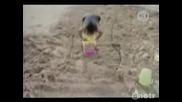 Компилация от смешни случки на плажа.