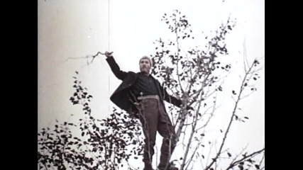 Дърво без корен (1974)