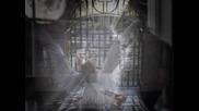 bir melek gordu beni yolda Toni Storaro - Angel Bql
