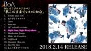 [ T E A S E R ] Boa's 9th album 'watashi Kono Mama de ii no Kana' Teaser