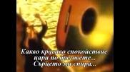 Zucchero - Il Volo (превод)