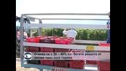 Очаква се с 30– 40% по- богата реколта от грозде през тази година