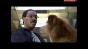 Доктор Дулитъл (1998) Бг Аудио ( Високо Качество ) Част 2 Филм