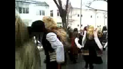 babugerite strumskoo pernik 2011