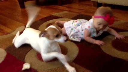Куче учи бебе как да пълзи!