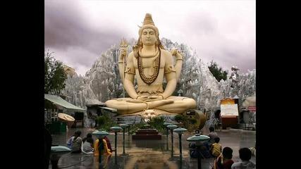 1200 Mics - Shivas India